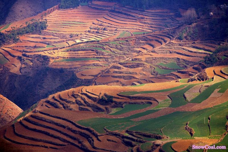 云南 梯田 自然环境 地理