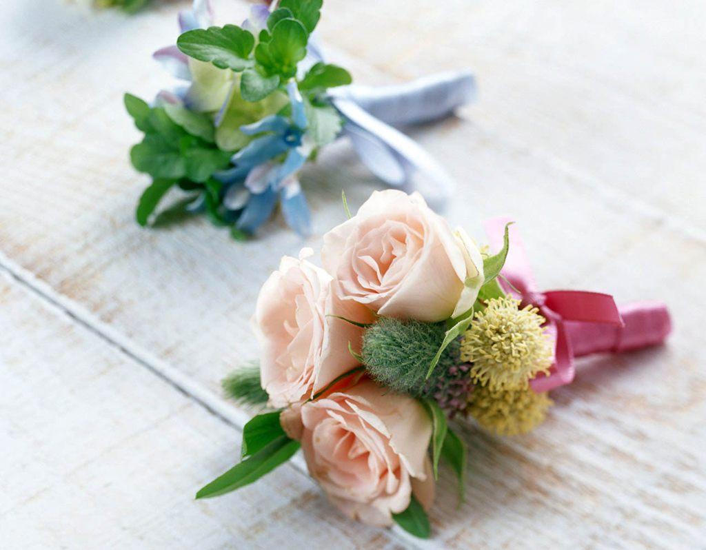 各种颜色的玫瑰花[4],玫瑰花