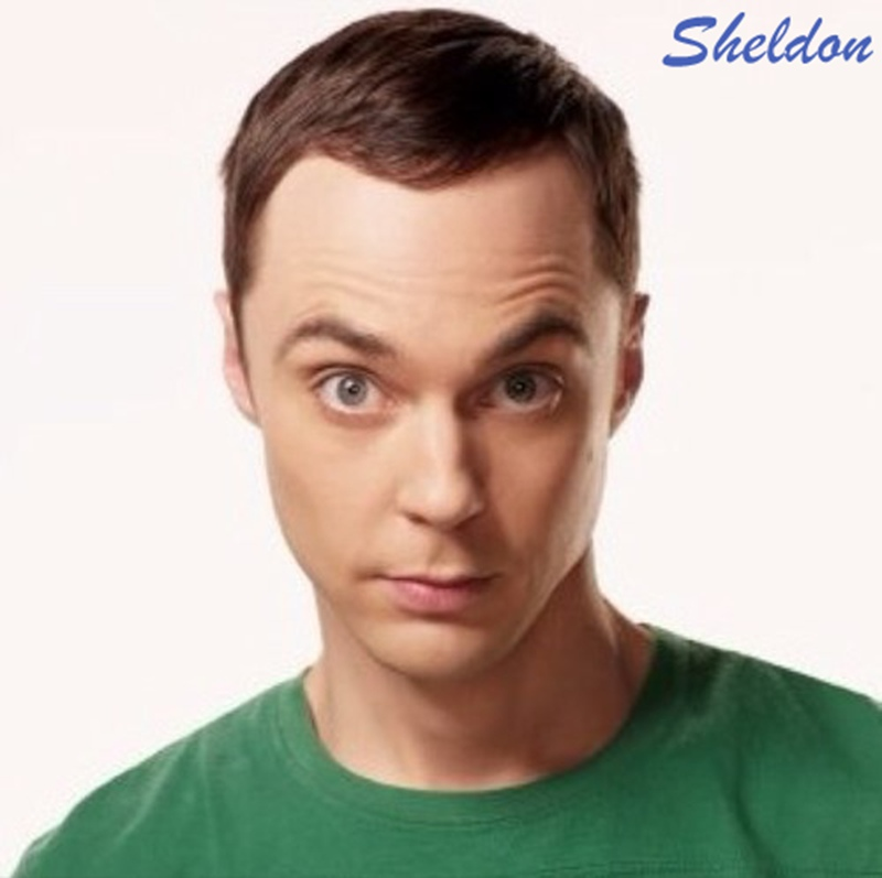Mr.Bean VS Sheldon Cooper