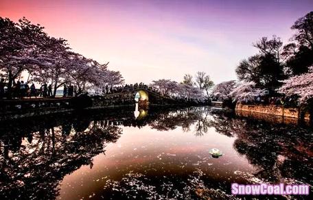 三四月份最适合南京人的赏花踏青旅游胜地【含路线】