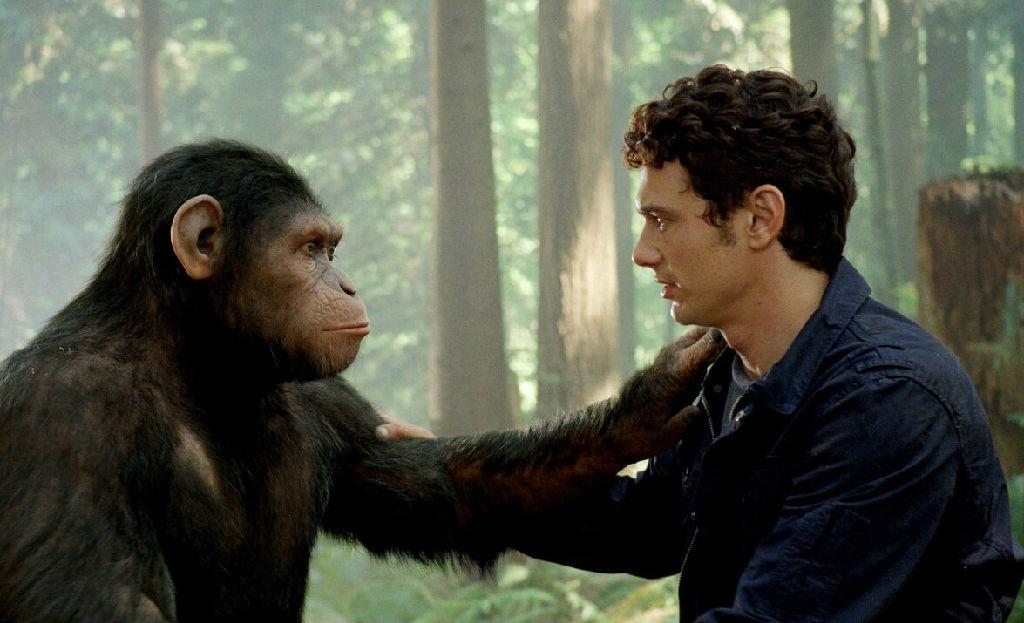原来黑猩猩记忆能力完全超越过我们人类