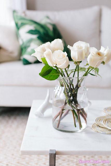 花朵 美图 摄影