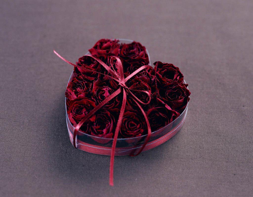 各种颜色的玫瑰花[5],玫瑰花