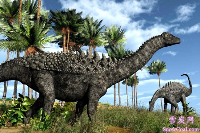 恐龙高清图片 长颈恐龙