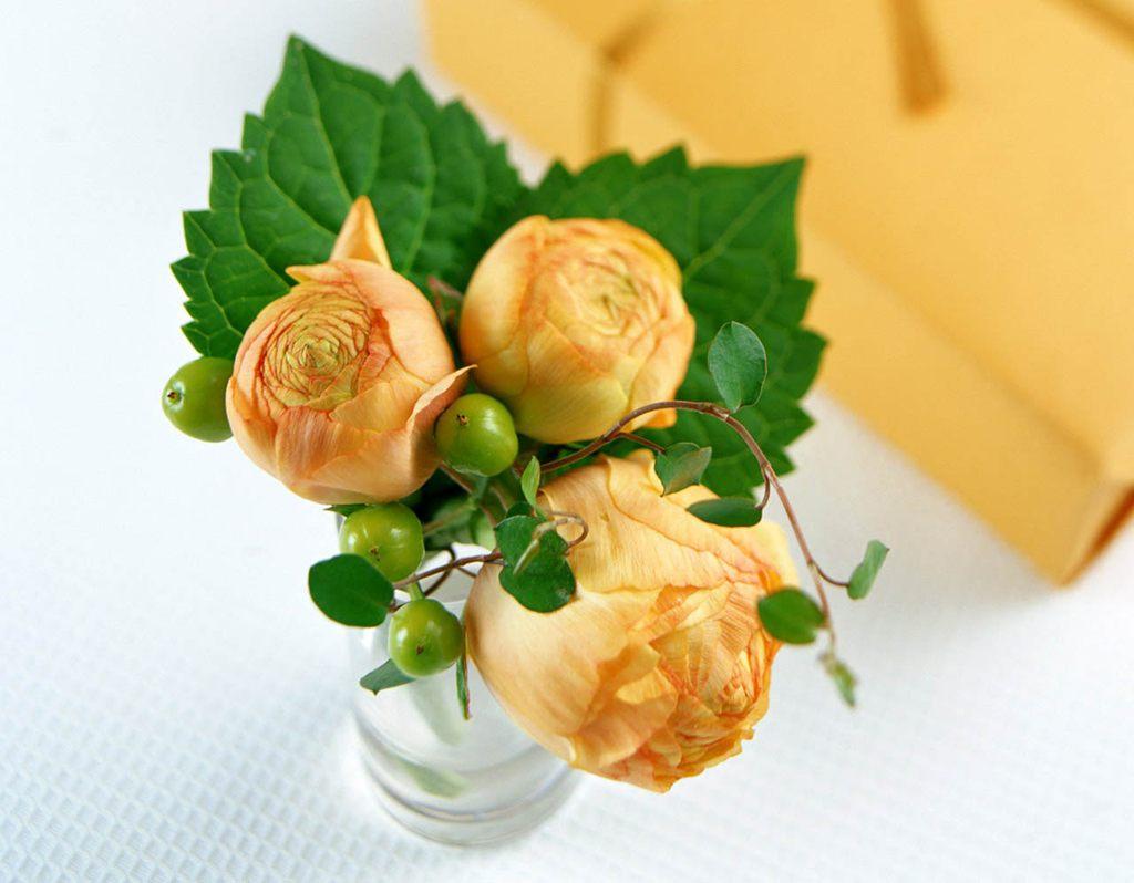 各种颜色的玫瑰花[6],玫瑰花